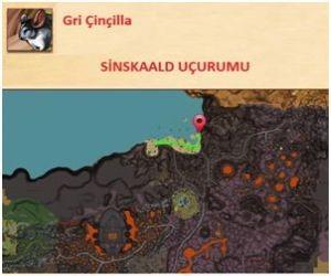 Teknolojice-GriCincilla-2
