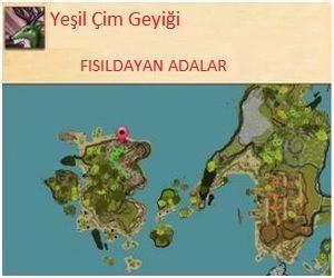 Teknolojice-YesilCimGeyik-1