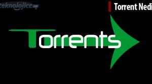 Torrent Nedir?