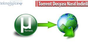 Torrent Dosyası Nasıl İndirilir?