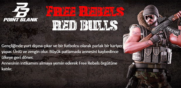 Red Bulls