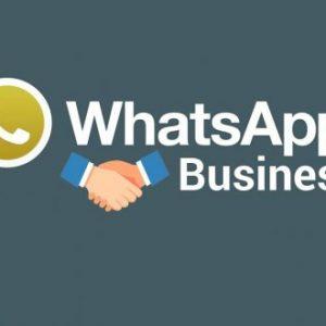 WhatsApp Business Kullanıma Sunuldu!